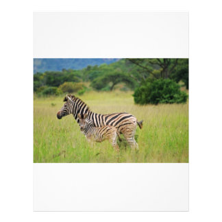 Zebra baby and mom personalized flyer