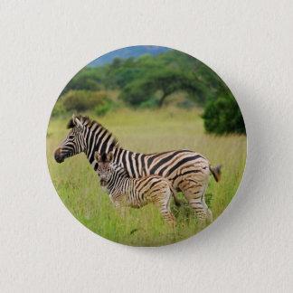 Zebra baby and mom pinback button