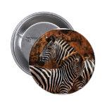 Zebra baby art pinback buttons