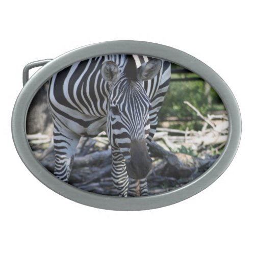 Zebra Belt Buckle