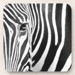 zebra beverage coaster