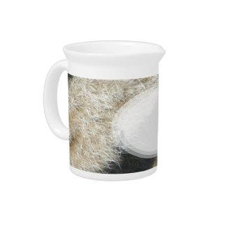 Zebra Beverage Pitcher