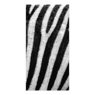 Zebra Black and White Striped Skin Texture Templat Card
