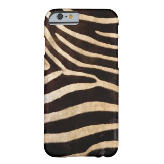 Zebra Body Fur iPhone 6 case