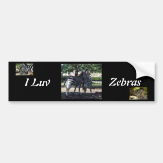Zebra Buds Bumper Sticker Car Bumper Sticker