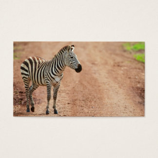 Zebra Business Card