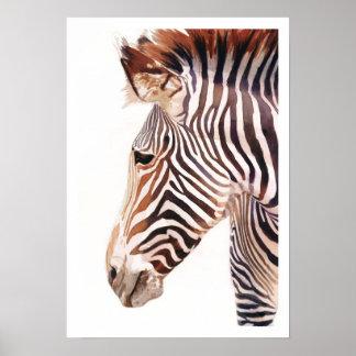 """Zebra Bust"" Zebra Wildlife Watercolor Poster"