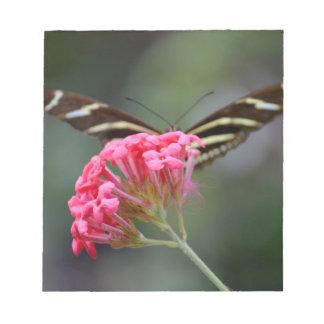 zebra butterfly behind pink florida flower notepad