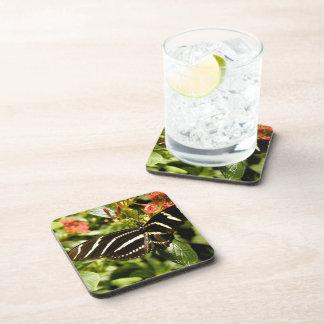 Zebra Butterfly Beverage Coaster