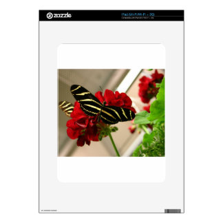 Zebra Butterfly Decal For iPad