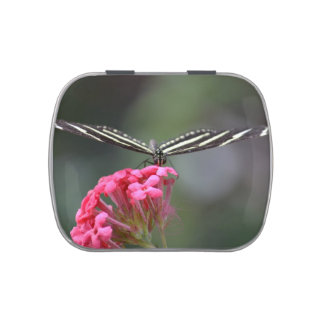 zebra butterfly head on pink flower animal jelly belly candy tin