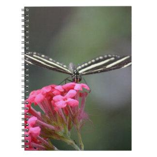 zebra butterfly head on pink flower animal notebooks