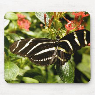 Zebra Butterfly Mouse Pad