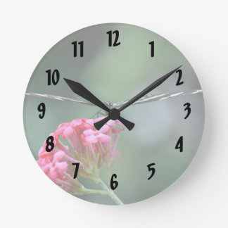 zebra butterfly thin wings pink flower round wall clock