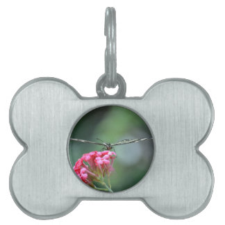 zebra butterfly thin wings pink flower pet name tag