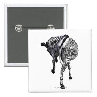 zebra 2 inch square button