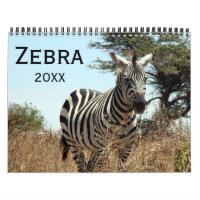 zebra calendar