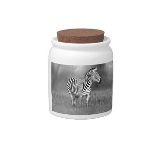 Zebra Candy Jars