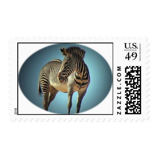 Zebra Circular Design Postage Stamp