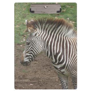Zebra Clipboards