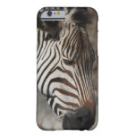 Zebra, close-up barely there iPhone 6 case