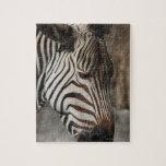 Zebra, close-up puzzle