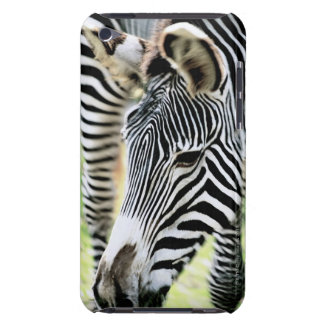 Zebra, close-up, selective focus barely there iPod cases