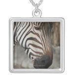 Zebra, close-up square pendant necklace