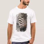 Zebra, close-up T-Shirt