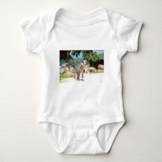 Zebra Convention Baby Bodysuit