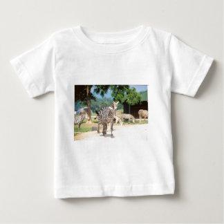 Zebra Convention Baby T-Shirt
