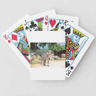Zebra Convention Bicycle Card Deck