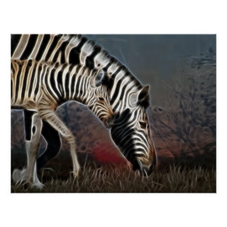 Zebra crossing series South Africa Print