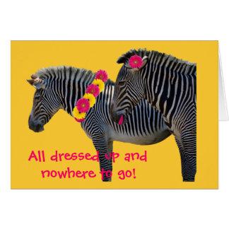 Zebra design with fun gerber daisies card