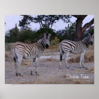Zebra Double Take Photo Poster
