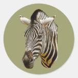 Zebra Drawing Classic Round Sticker
