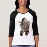 Zebra Drawing Shirt