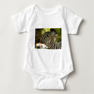 Zebra Eating Infant Creeper