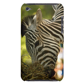 Zebra Eating IPod Touch Case