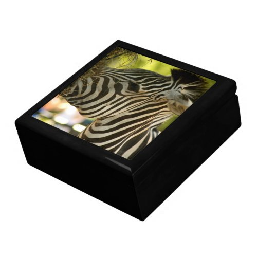 Zebra Eating Jewelry Box