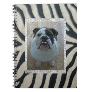 Zebra English bulldog Notebook
