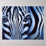 Zebra Face Wildlife Art Print