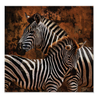 Zebra Fall Stripes PORTFOLIO poster, print, wall