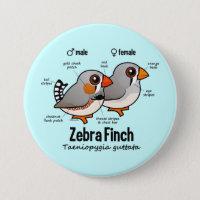 Zebra Finch Statistics Round Button