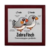 Zebra Finch Statistics Large 7.125