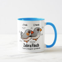 Zebra Finch Statistics Combo Mug