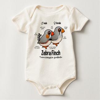 Zebra Finch Statistics Romper