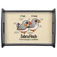 Zebra Finch Statistics Large Serving Tray