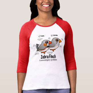 Zebra Finch Statistics T Shirt