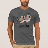 Zebra Finch Statistics Men's Basic American Apparel T-Shirt